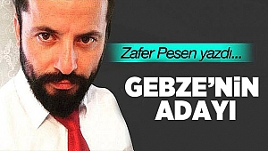 GEBZE'NİN ADAYI